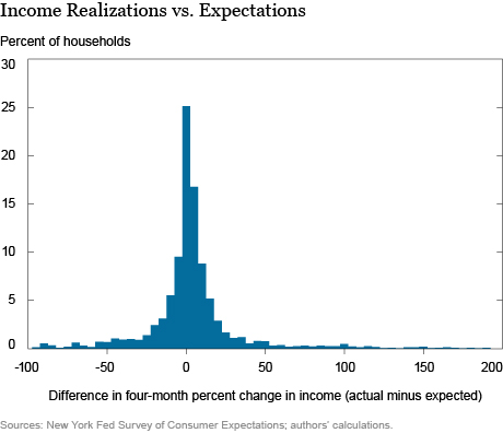 Understanding Permanent and Temporary Income Shocks