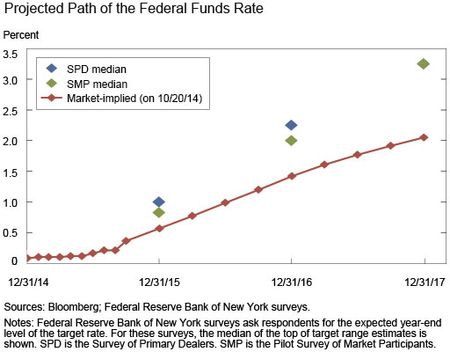 Path of the Policy Rate