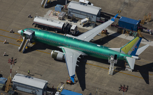 Firm-Level Shocks and GDP Growth: The Case of Boeing's 737 MAX Production Pause